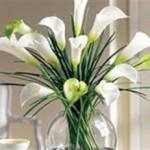 Làm sao để cắm hoa tươi lâu?