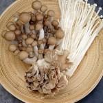 Chọn và chế biến nấm