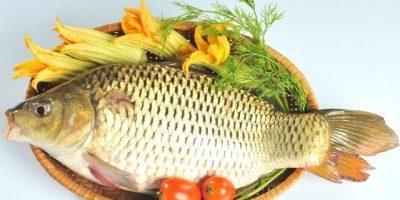 Cháo cá chép: Món bổ cho bà bầu