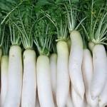Vào mùa thu bạn nên ăn rau củ nào?
