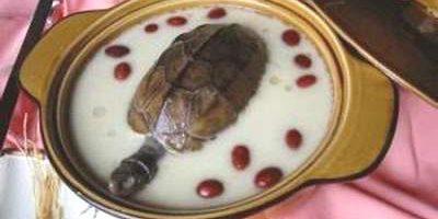 Rùa hầm bách hợp giúp bổ thận