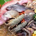 Ăn hải sản lúc mang thai giúp thai nhi thông minh hơn