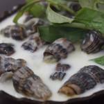 Làm món ốc len xào dừa