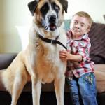Tình bạn của cậu bé bệnh tật và chú chó 3 chân