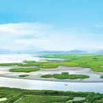Vịnh Suncheon Hàn Quốc