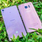 Đọ sắc hồng giữa S7 Edge Pink Gold với Z5 Premium Pink Edition