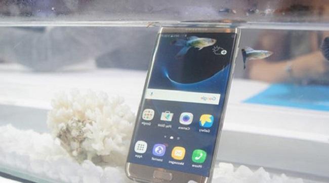 """Galaxy S7 được đặt vào trong bể cá hoàn toàn """"bình yên vô sự"""""""