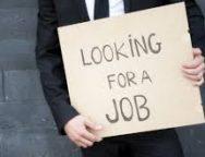 Điều khiến nhiều sinh viên phải thất nghiệp