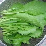 Cách nhận biết rau sạch, không hóa chất