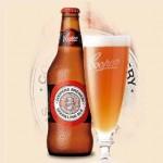 Bia: Một phần gây ra bệnh gút