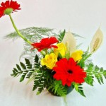 Để hoa lâu tàn bạn phải làm gì?