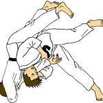 Chiến lược Judo trong kinh doanh