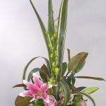 Bộ sưu tập cắm hoa cho ngày xuân