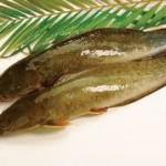 Khử mùi tanh cho cá trê