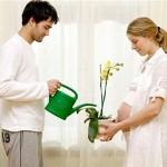 Phương pháp tăng cường khả năng mang thai